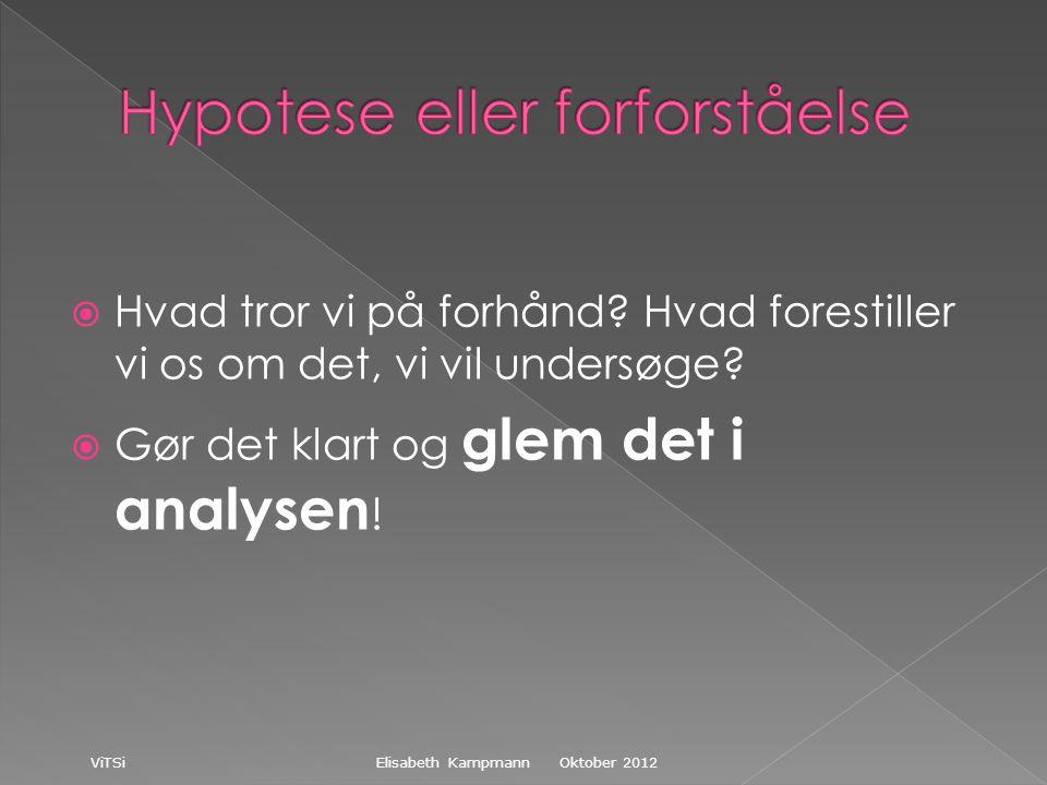 Oktober 2012 ViTSi Elisabeth Kampmann  Hvad tror vi på forhånd.