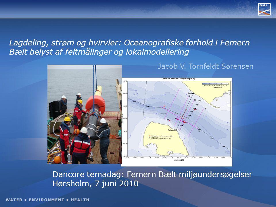 Lagdeling, strøm og hvirvler: Oceanografiske forhold i Femern Bælt belyst af feltmålinger og lokalmodellering Jacob V.