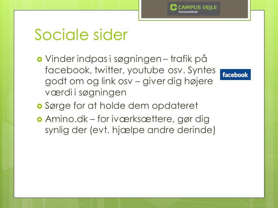 Sociale sider  Vinder indpas i søgningen – trafik på facebook, twitter, youtube osv.