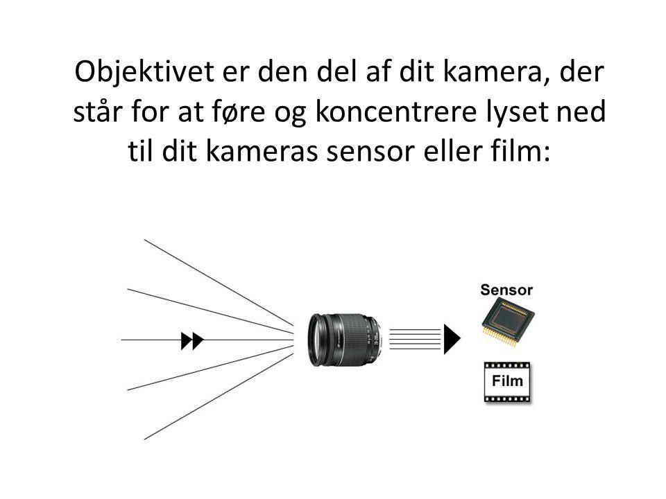 Objektivet er den del af dit kamera, der står for at føre og koncentrere lyset ned til dit kameras sensor eller film: