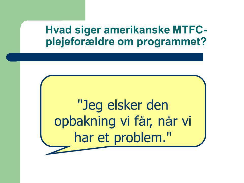 Hvad siger amerikanske MTFC- plejeforældre om programmet.