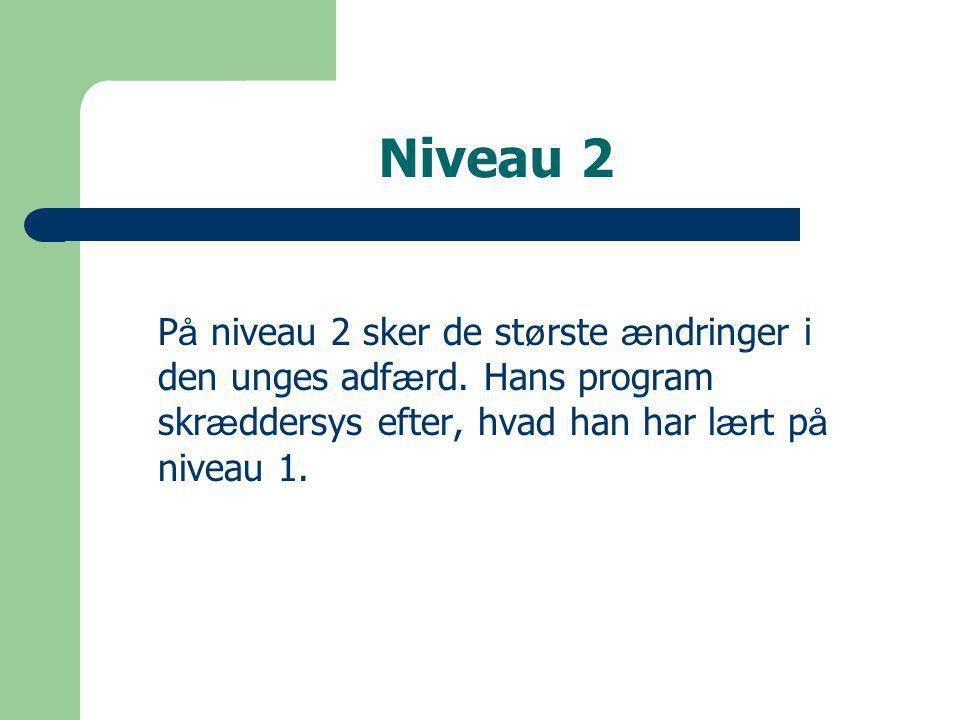 Niveau 2 P å niveau 2 sker de st ø rste æ ndringer i den unges adf æ rd.