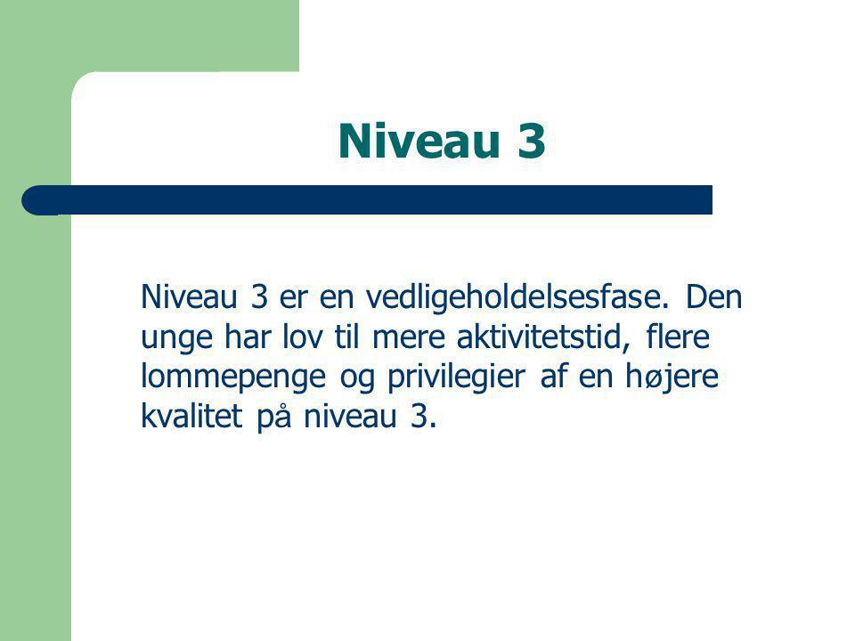 Niveau 3 Niveau 3 er en vedligeholdelsesfase.