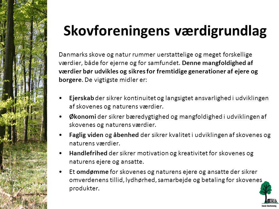 Skovforeningens værdigrundlag Danmarks skove og natur rummer uerstattelige og meget forskellige værdier, både for ejerne og for samfundet.