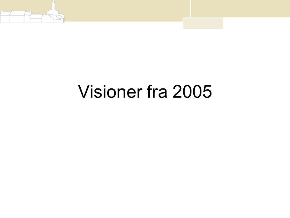 Visioner fra 2005