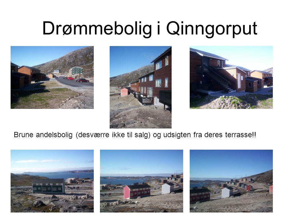 Drømmebolig i Qinngorput Brune andelsbolig (desværre ikke til salg) og udsigten fra deres terrasse!!