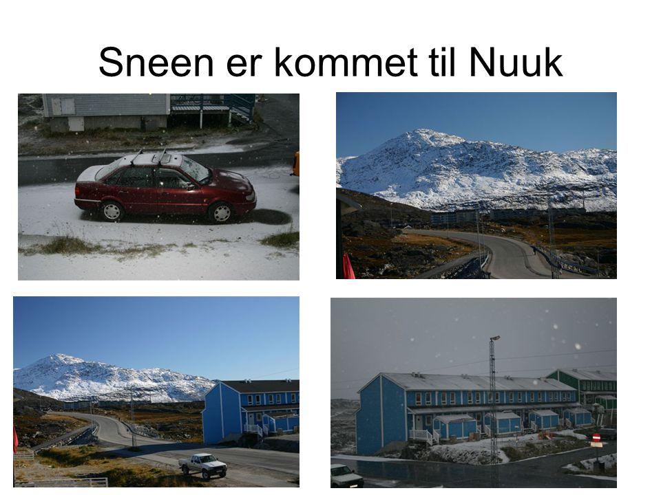 Sneen er kommet til Nuuk