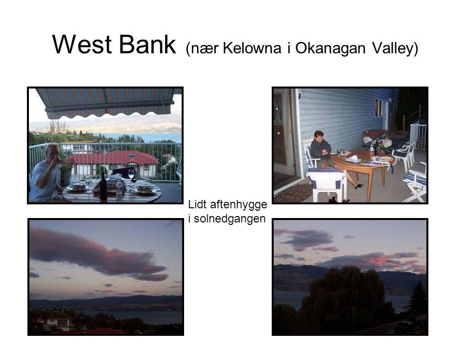 West Bank (nær Kelowna i Okanagan Valley) Lidt aftenhygge i solnedgangen