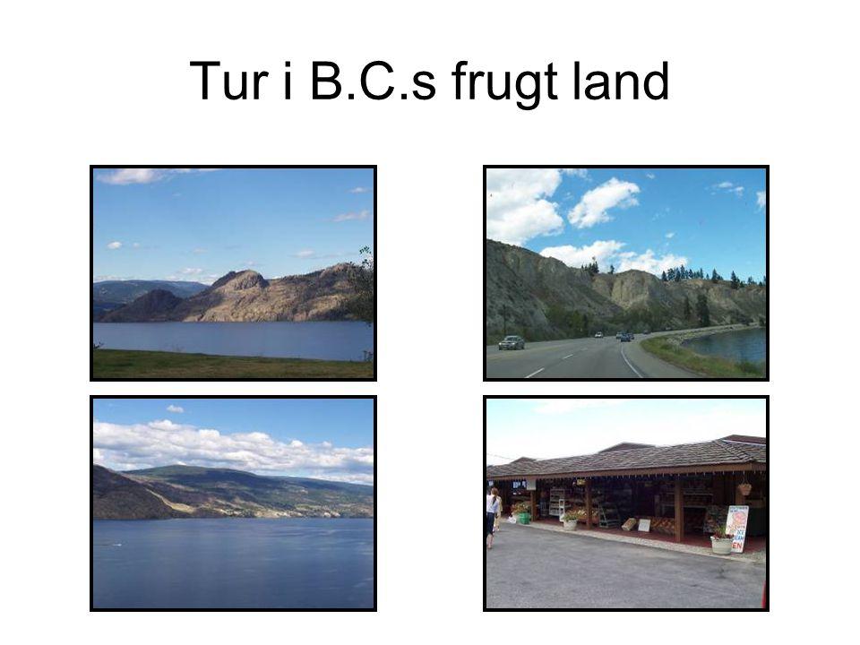 Tur i B.C.s frugt land