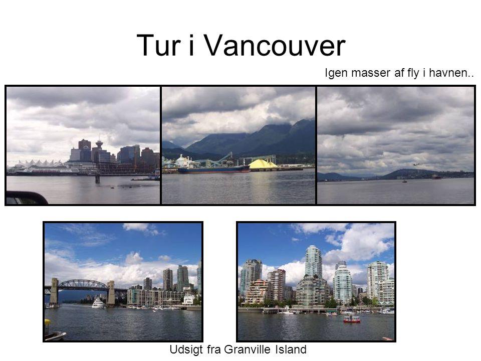 Tur i Vancouver Udsigt fra Granville Island Igen masser af fly i havnen..