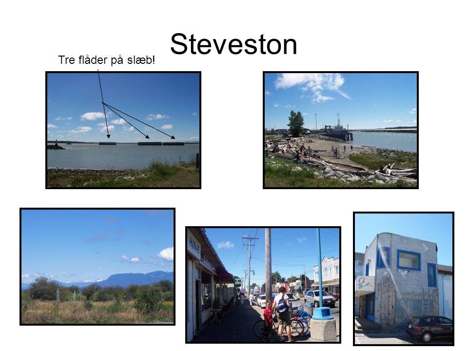 Steveston Tre flåder på slæb!