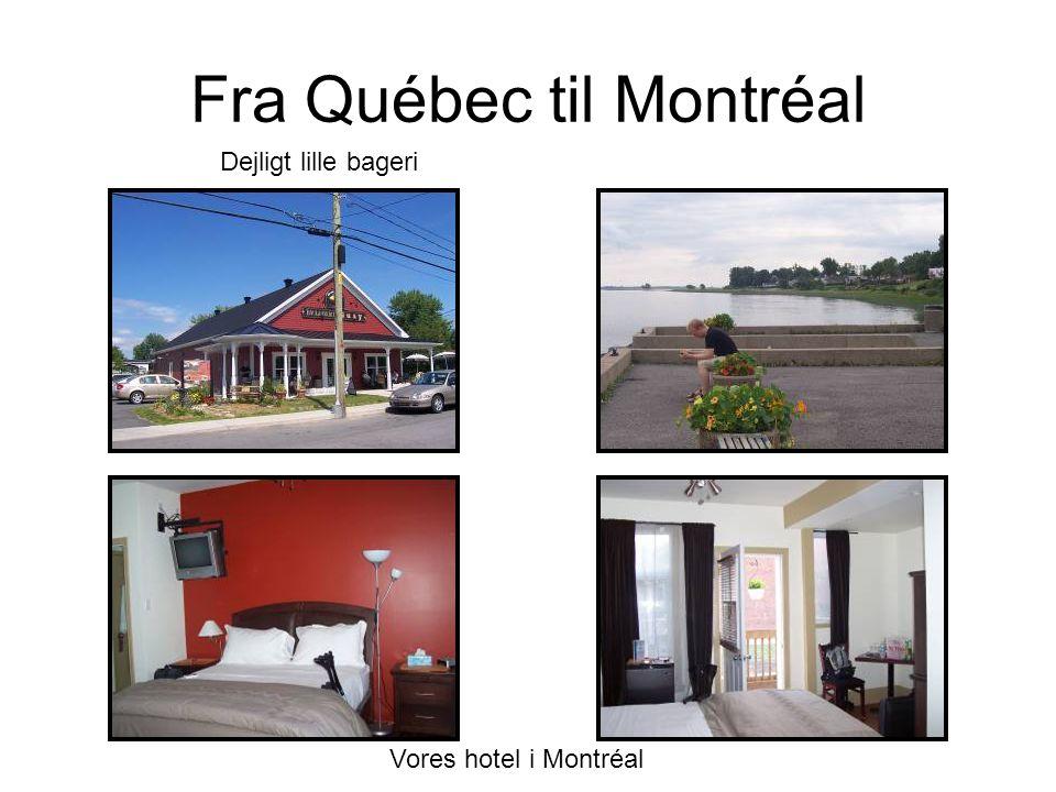 Fra Québec til Montréal Vores hotel i Montréal Dejligt lille bageri