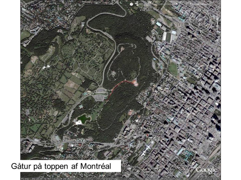 Gåtur på toppen af Montréal