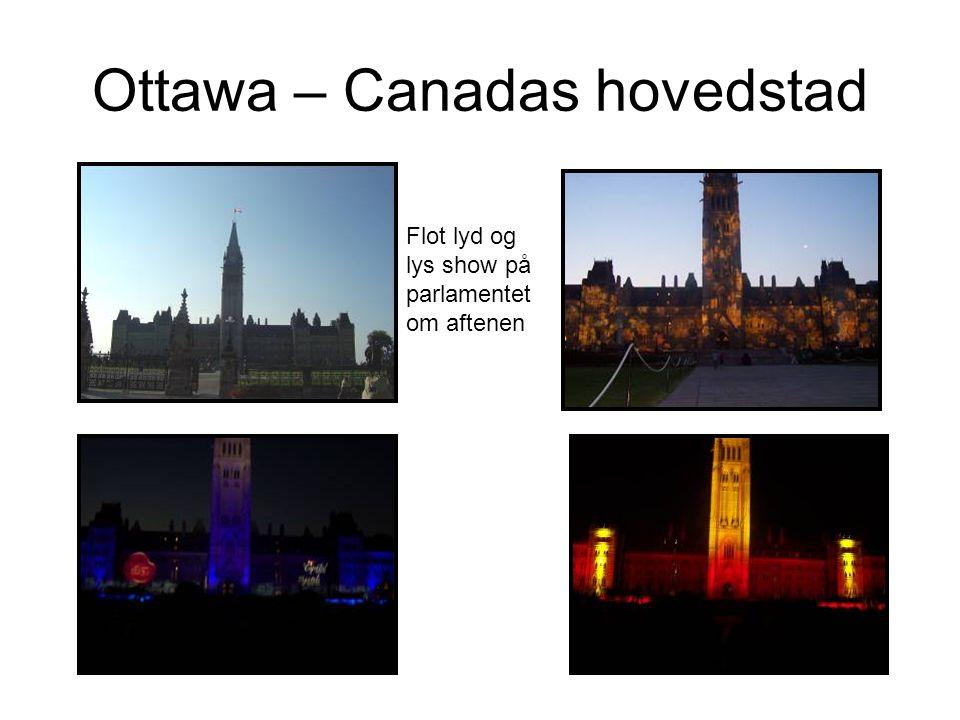 Ottawa – Canadas hovedstad Flot lyd og lys show på parlamentet om aftenen