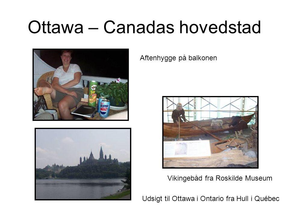 Vikingebåd fra Roskilde Museum Aftenhygge på balkonen Udsigt til Ottawa i Ontario fra Hull i Québec