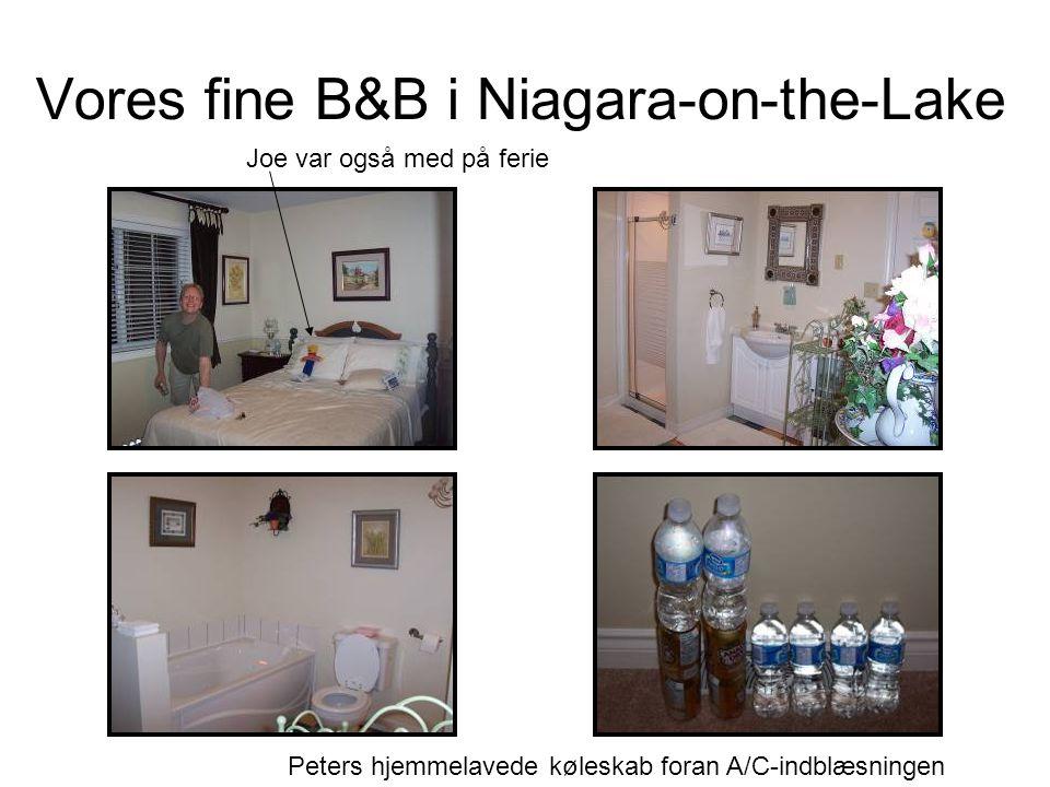 Vores fine B&B i Niagara-on-the-Lake Joe var også med på ferie Peters hjemmelavede køleskab foran A/C-indblæsningen