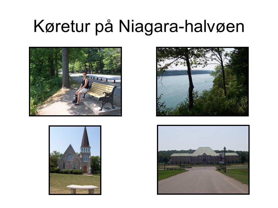 Køretur på Niagara-halvøen