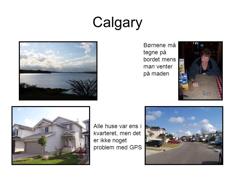 Calgary Børnene må tegne på bordet mens man venter på maden Alle huse var ens i kvarteret, men det er ikke noget problem med GPS