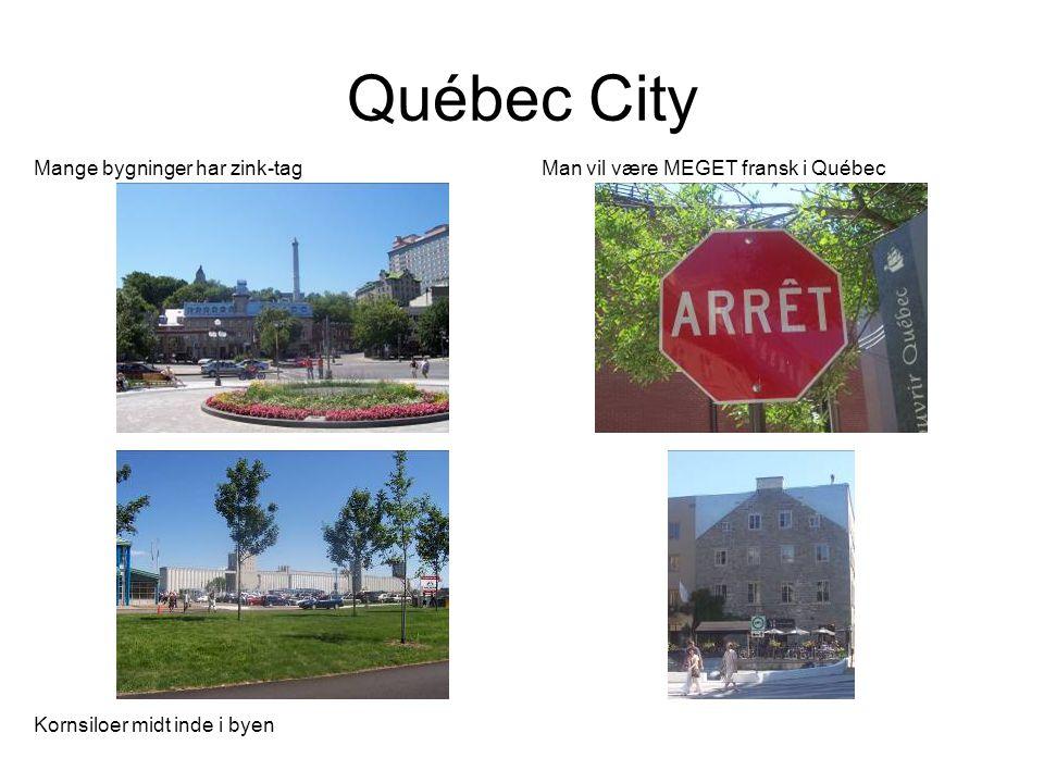 Québec City Mange bygninger har zink-tag Man vil være MEGET fransk i Québec Kornsiloer midt inde i byen