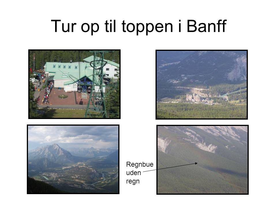Tur op til toppen i Banff Regnbue uden regn