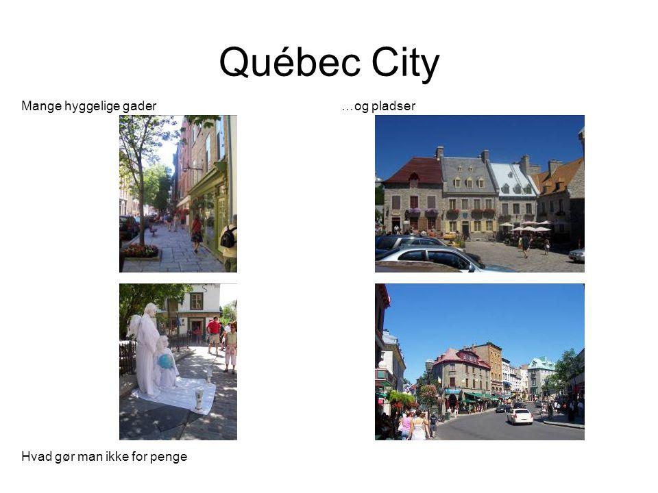 Québec City Mange hyggelige gader …og pladser Hvad gør man ikke for penge
