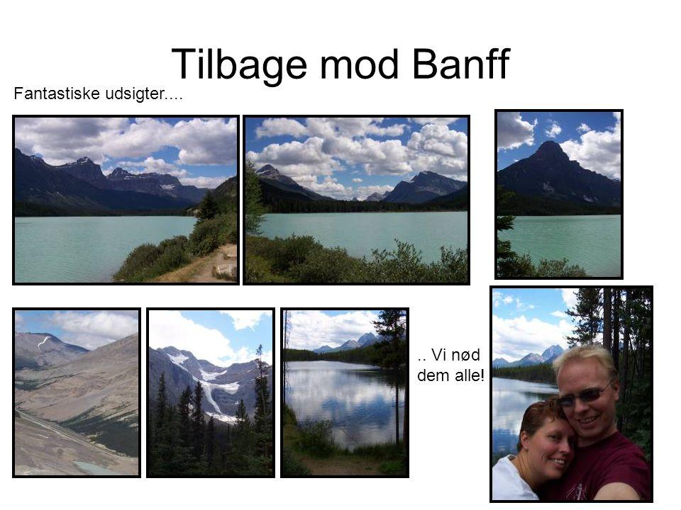 Tilbage mod Banff Fantastiske udsigter...... Vi nød dem alle!