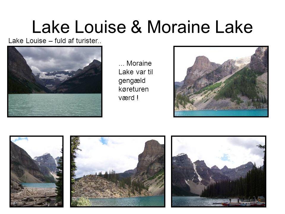 Lake Louise & Moraine Lake Lake Louise – fuld af turister.....