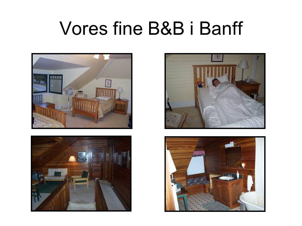 Vores fine B&B i Banff
