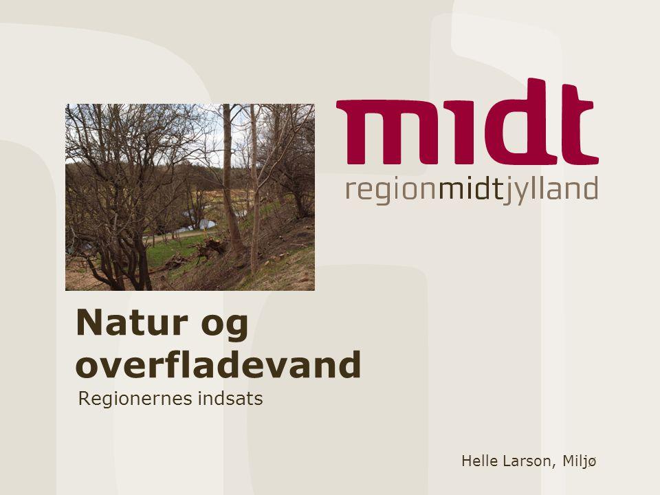 Natur og overfladevand Regionernes indsats Helle Larson, Miljø