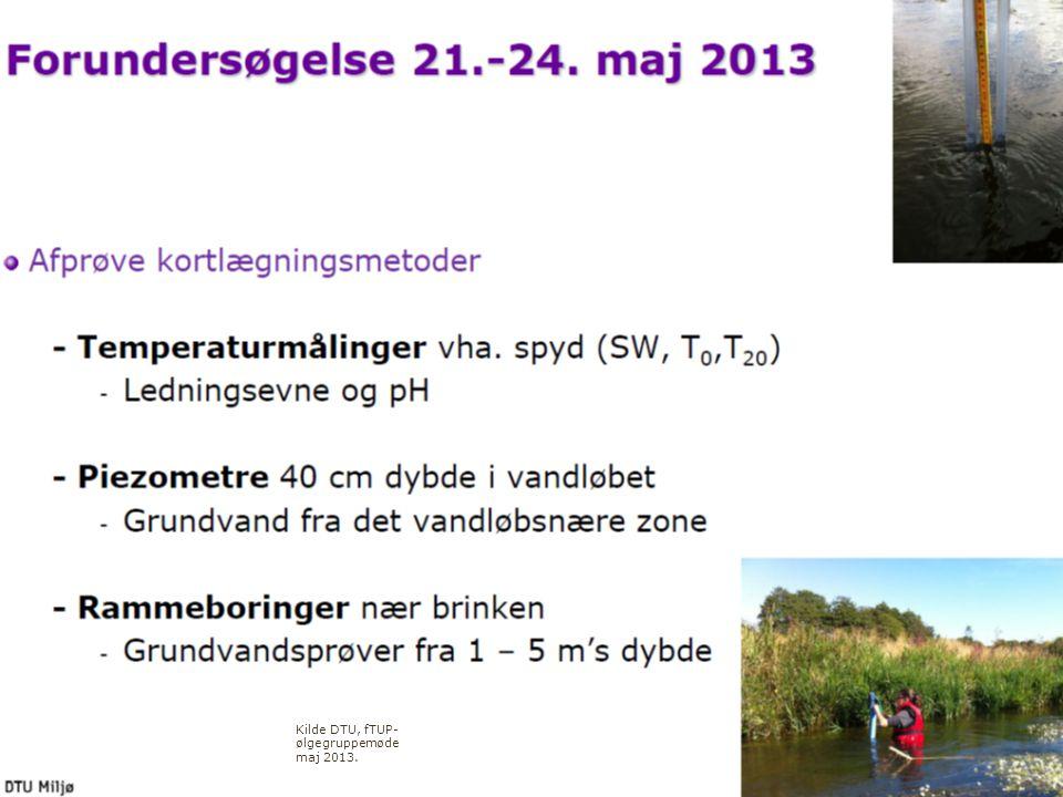 26. september 2013 Region Midtjylland, miljø Helle Larson Kilde DTU, fTUP- ølgegruppemøde maj 2013.