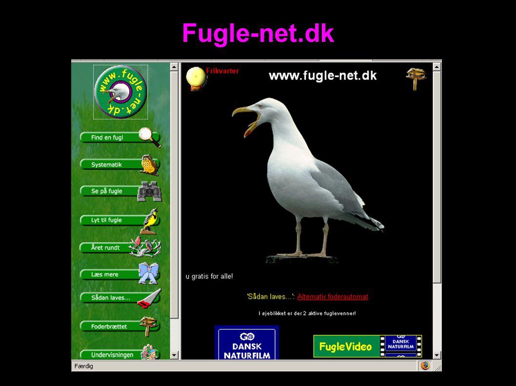 Fugle-net.dk