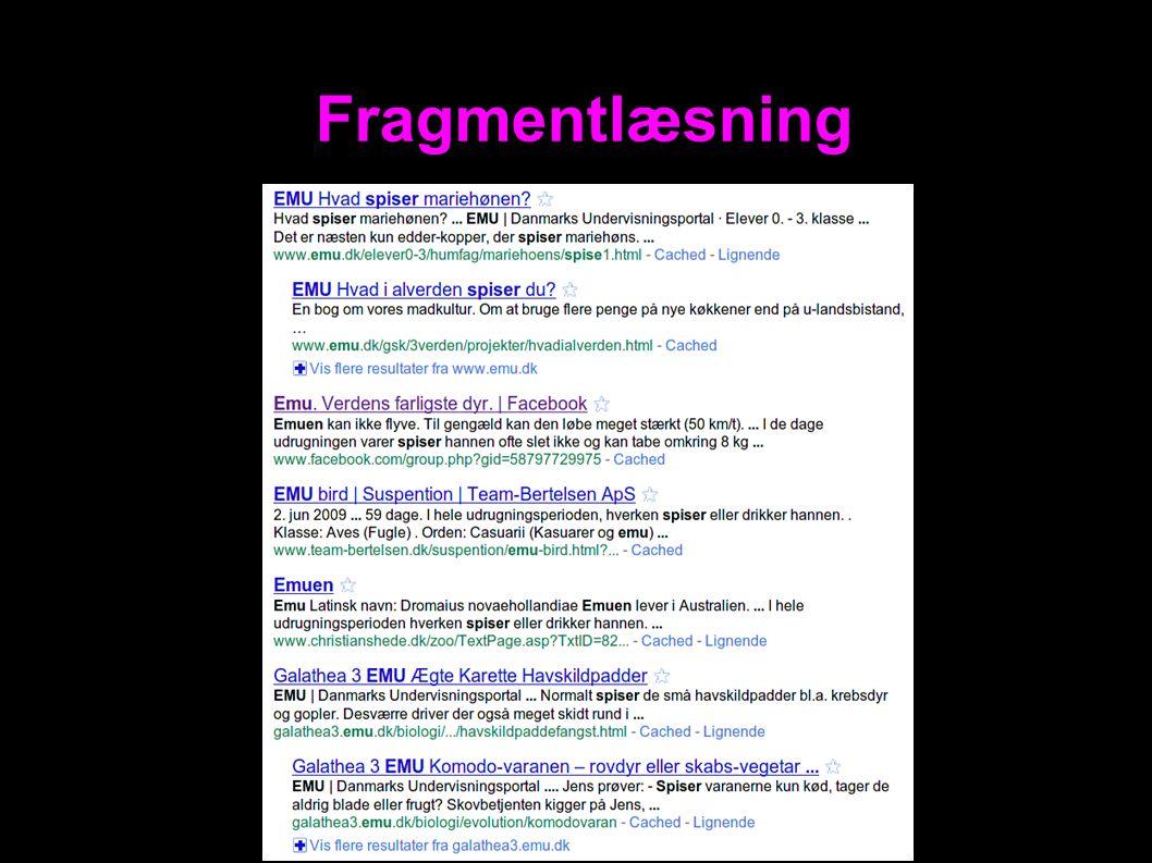 Fragmentlæsning