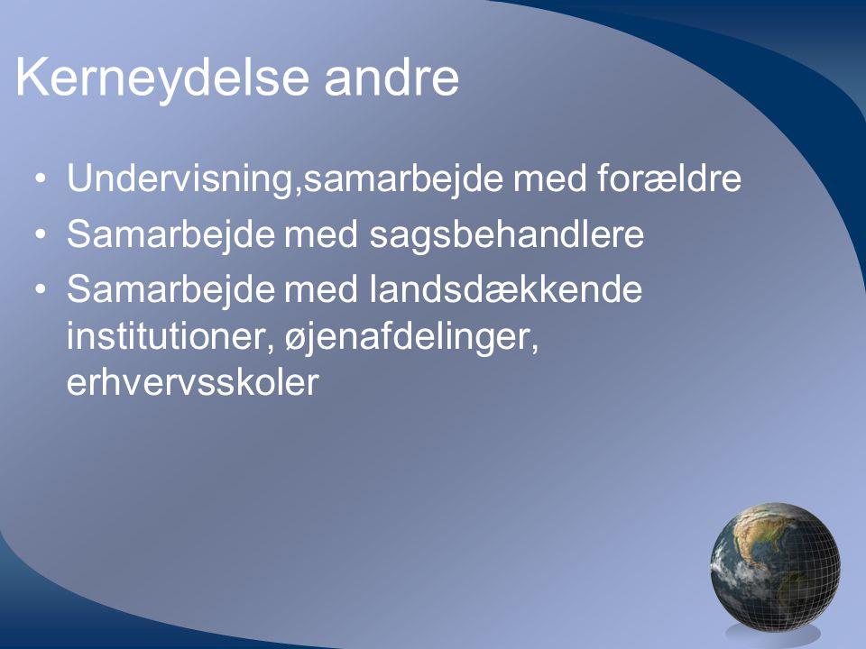 Kerneydelse andre •Undervisning,samarbejde med forældre •Samarbejde med sagsbehandlere •Samarbejde med landsdækkende institutioner, øjenafdelinger, erhvervsskoler