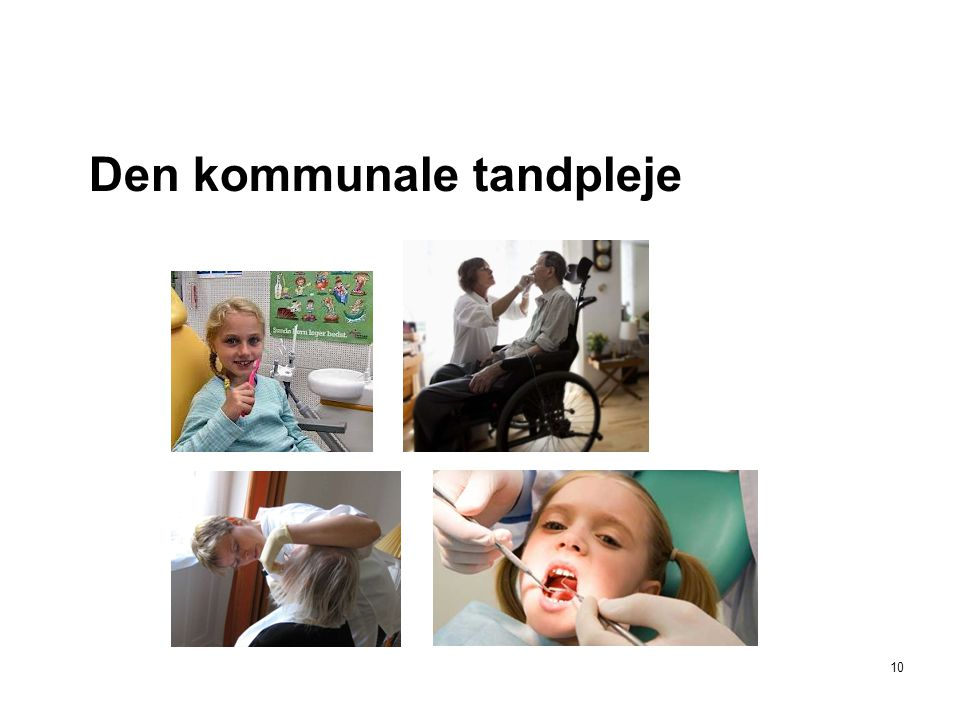 Den kommunale tandpleje 10
