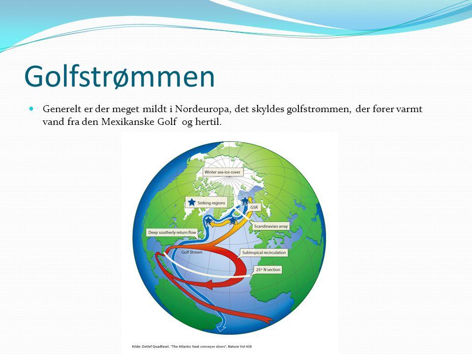 Golfstrømmen  Generelt er der meget mildt i Nordeuropa, det skyldes golfstrømmen, der fører varmt vand fra den Mexikanske Golf og hertil.