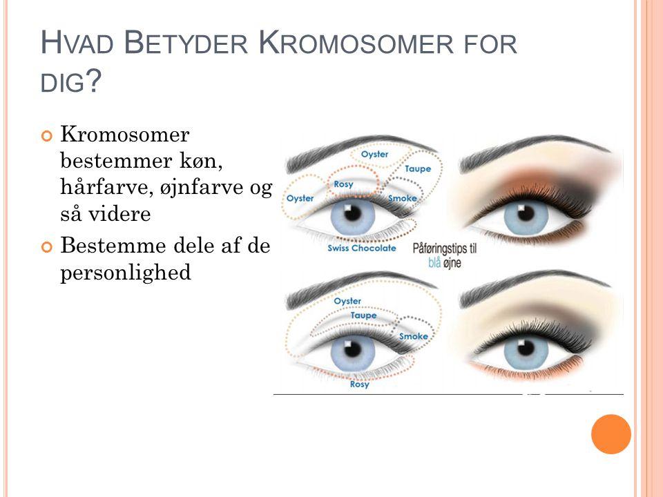 H VAD B ETYDER K ROMOSOMER FOR DIG .