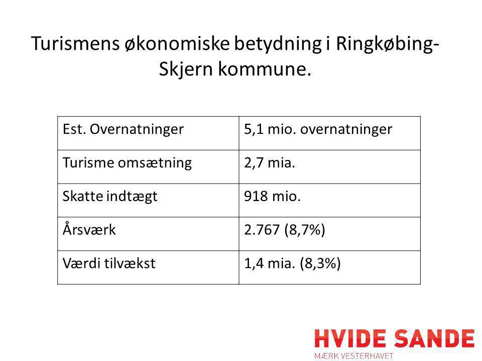 Turismens økonomiske betydning i Ringkøbing- Skjern kommune.