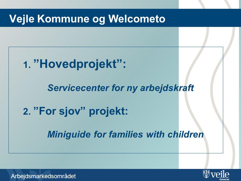Arbejdsmarkedsområdet Vejle Kommune og Welcometo 1.