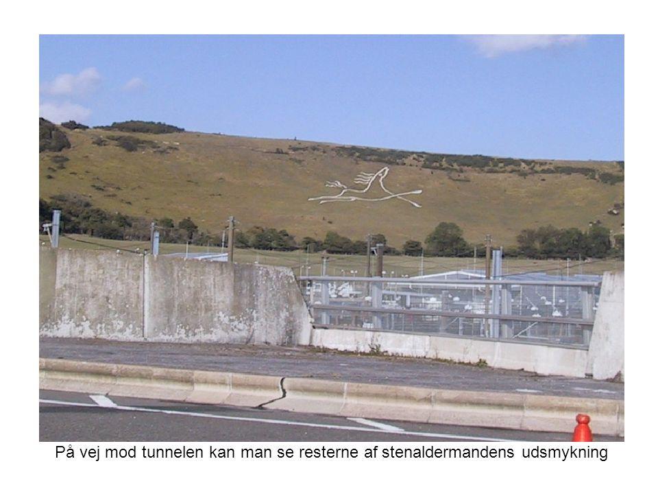 På vej mod tunnelen kan man se resterne af stenaldermandens udsmykning