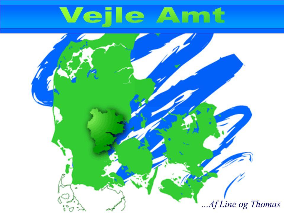 Danmarks laveste amtsskat...Af Line og Thomas