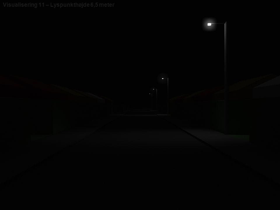 Visualisering 11 – Lyspunkthøjde 6,5 meter