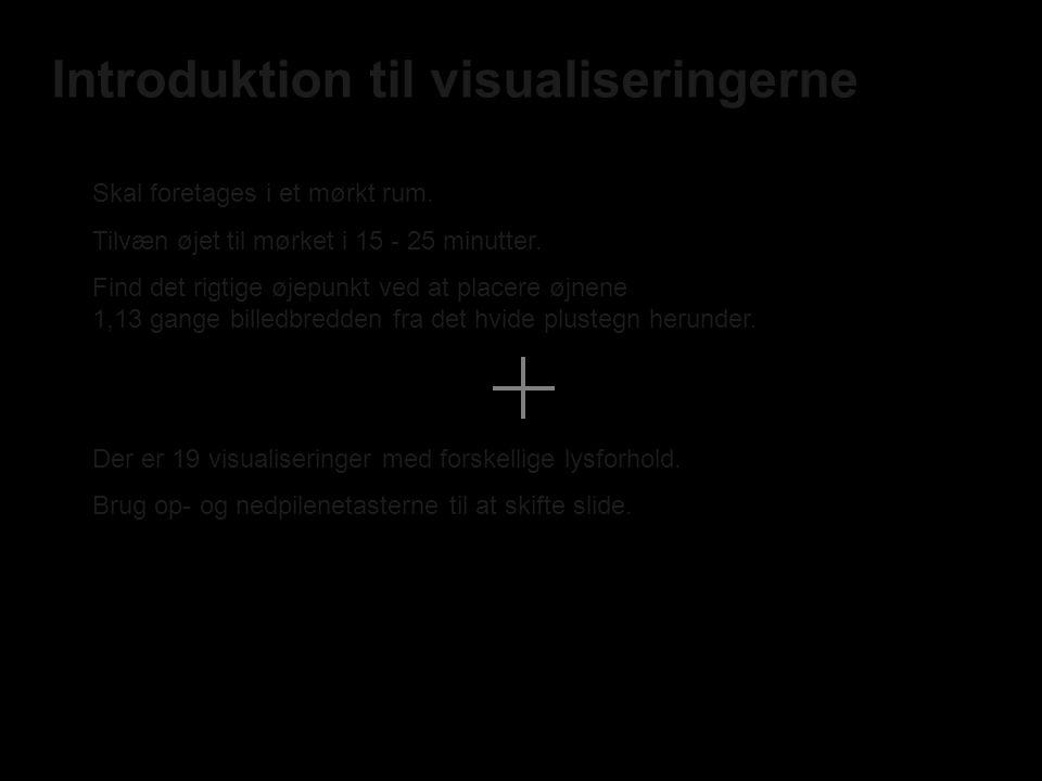 Introduktion til visualiseringerne Skal foretages i et mørkt rum.
