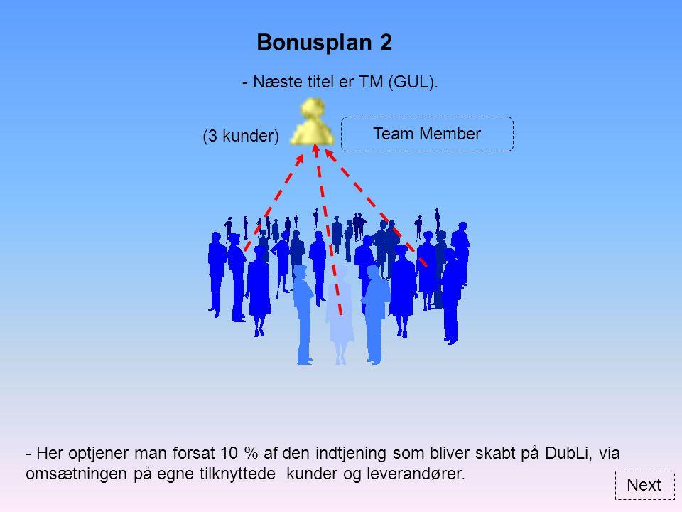 Bonusplan 2 (3 kunder) Team Member - Næste titel er TM (GUL).