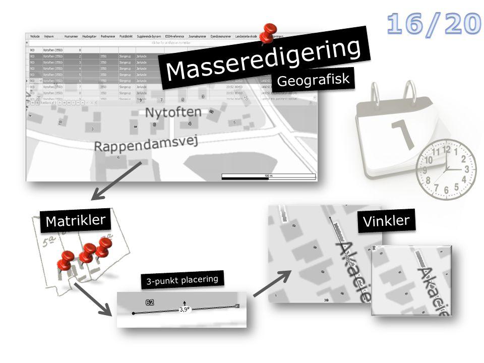 Masseredigering Geografisk Vinkler Matrikler 3-punkt placering