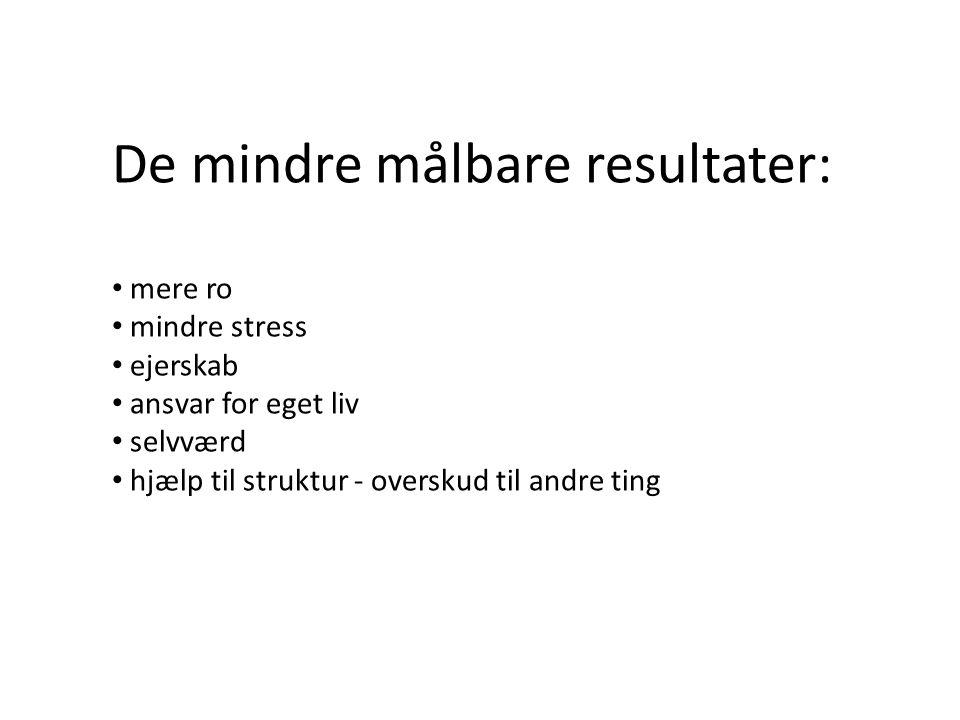 De mindre målbare resultater: • mere ro • mindre stress • ejerskab • ansvar for eget liv • selvværd • hjælp til struktur - overskud til andre ting
