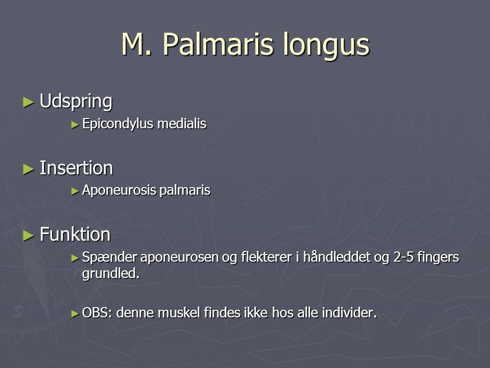 M. Palmaris longus ► Udspring ► Epicondylus medialis ► Insertion ► Aponeurosis palmaris ► Funktion ► Spænder aponeurosen og flekterer i håndleddet og