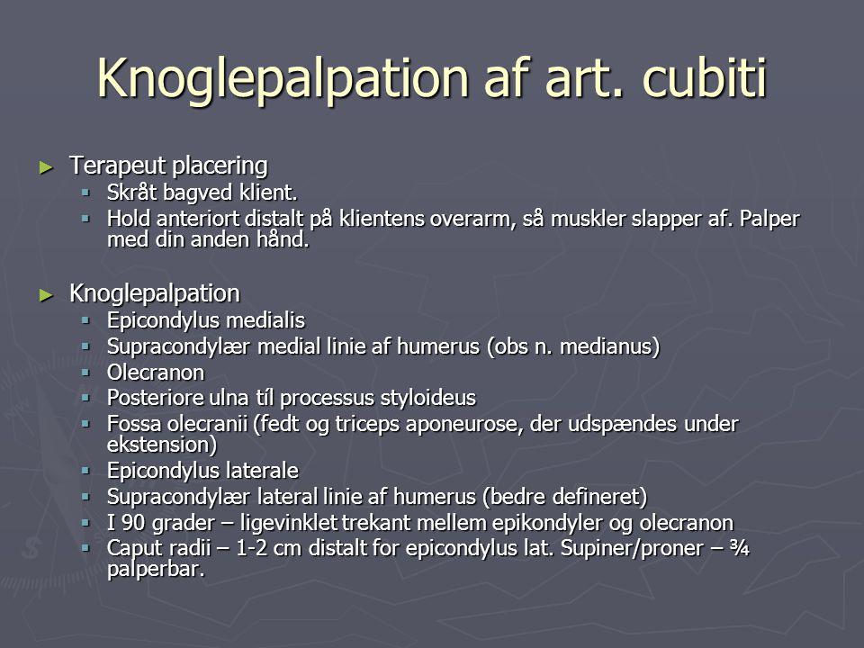 Knoglepalpation af art. cubiti ► Terapeut placering  Skråt bagved klient.  Hold anteriort distalt på klientens overarm, så muskler slapper af. Palpe
