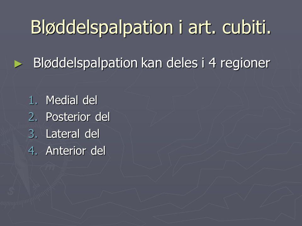 Bløddelspalpation i art. cubiti. ► Bløddelspalpation kan deles i 4 regioner 1.Medial del 2.Posterior del 3.Lateral del 4.Anterior del