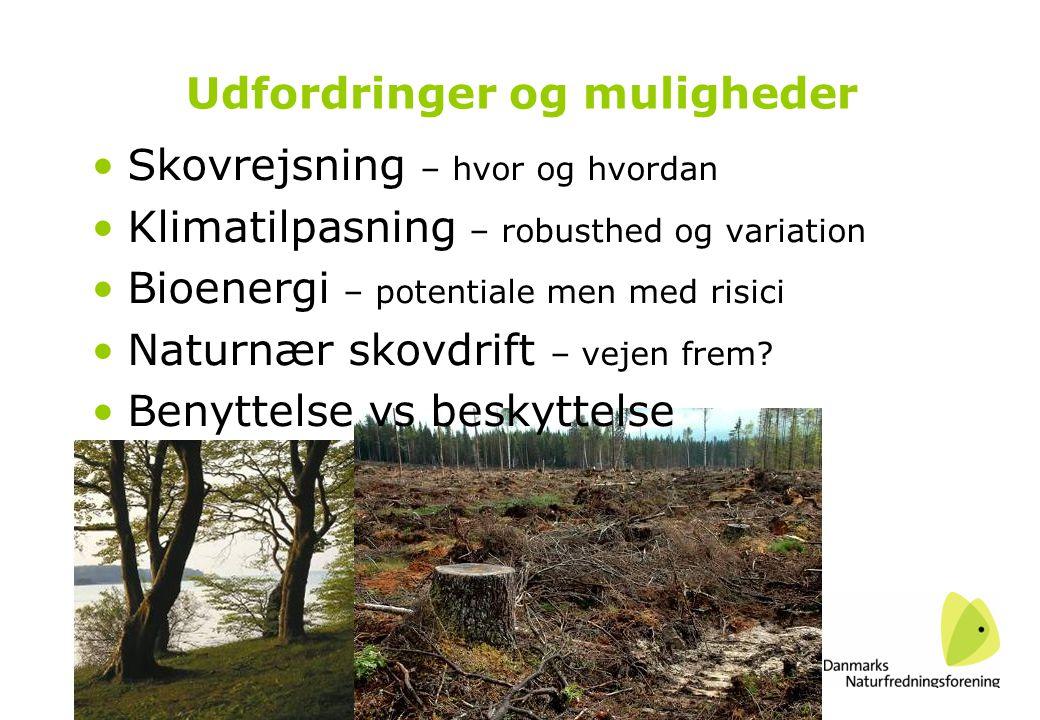 Udfordringer og muligheder •Skovrejsning – hvor og hvordan •Klimatilpasning – robusthed og variation •Bioenergi – potentiale men med risici •Naturnær skovdrift – vejen frem.