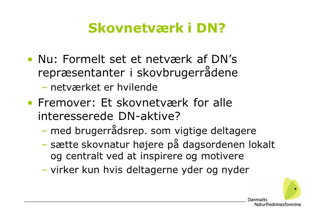 Skovnetværk i DN.